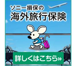 ソニー損保の海外旅行保険
